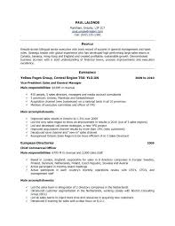 Example Of A Cv Simple Example Cv For Job Application Doc Courtnews