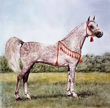 horse portraits and head study detailed fine tile art paintings