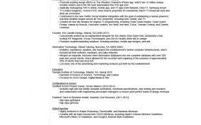 Design Resumes Resume Resume Design Stunning Animation Resume 100 Best Resume 72