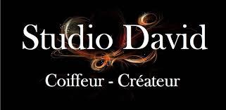 """Résultat de recherche d'images pour """"studio david thouars"""""""