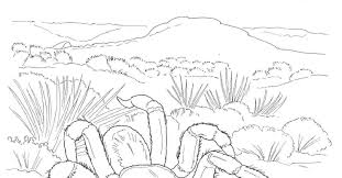Small Picture Desert Coloring Pages Coyotes Howling In Desert Coloring Page Free