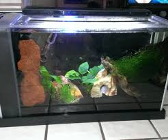 how to make a planted aquarium co2 generator infuser