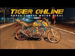 Ready stock wa 081215090480 shopee: Review Tiger 3second Lagu Mp3 Mp3 Dragon