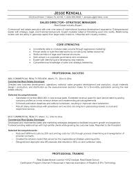 Resume Format For Real Estate Company Commercial Real Estate Resume