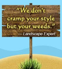 30 Funny And Catchy Slogans For Your Landscaping Business