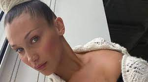 Bella Hadid makes relationship with ...