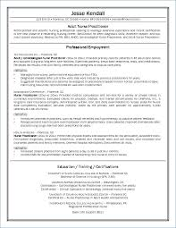 Resume For New Nurse Kantosanpo Com