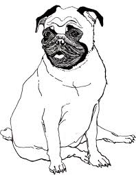 Small Picture Printable Pug Coloring Pages Free Pug Coloring Sheets Kids