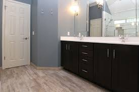 Austin Bath Redesign Bathroom Tile 101