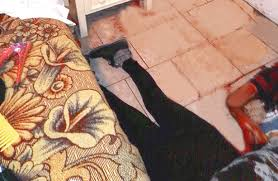 Resultado de imagen para mujer encontrada muerta en su habitacion