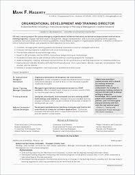 Sample Effective Resume Enchanting Resume Wording Examples Gorgeous Effective Resume Samples Typical