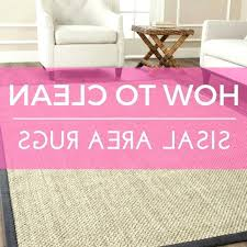 how to clean a sisel rug how to clean sisal area rugs sisal rug cleaning s