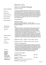 Sample It Project Manager Resume The Best Example Experience