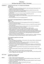 Marketing Manager Sample Resume Partnership Marketing Manager Resume Samples Velvet Jobs 10