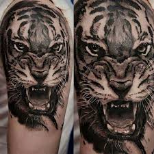 tiger roar tattoo. Beautiful Tattoo Grey Ink Realistic Roaring Tiger Tattoo On Sleeve By Kory Angarita Intended Roar Askideascom