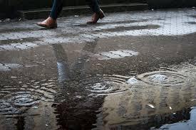Image result for eső