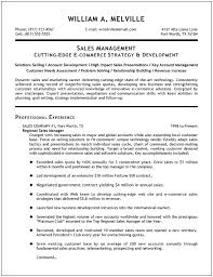Example Sales Manager Resume