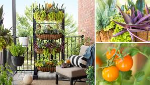 Small Picture Small Space Balcony Garden