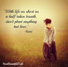 Rumi Quotes On Life