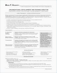 Administrative Assistant Sample Resume Stunning Word Template Resume Simple Cheeky Administrative Assistant Resume