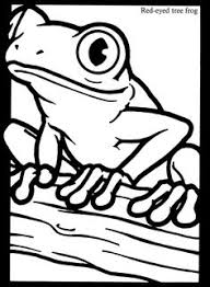 Small Picture Rainforest Frogs Coloring Pages Coloring Coloring Pages