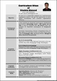 Resume Examples For Experienced Professionals Professional It