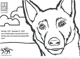 Free Printable Dog Coloring Pages Prairie Dog Coloring Page Cute