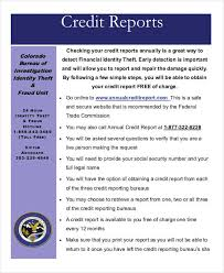 Sample Credit Report Pdf And 8Th Grade Book Report Examples - Ondy ...