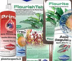 Schede piante