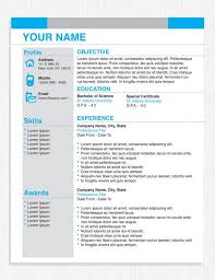 Business Resume Template Beauteous Gallery Of 48 Best Ideas About Business Resume On Pinterest Resume