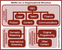 Company Organizational Structure Chart Netflix Inc S Organizational Structure Its Strategic