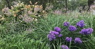 195 000 square feet of perennial gardens free and open to the public