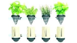 in home herb garden kit outdoor indoor with light canada her