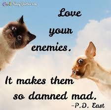 Love Your Enemies It Makes Them So Damned Mad New Love Animal Quotes