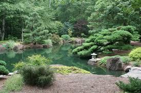 Japanese Garden Pond (135)