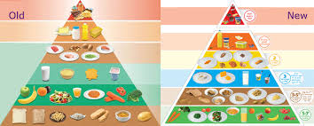 food pyramid 2014 servings. Simple Food Pic Of New Food Pyramid Side By With Old On Food Pyramid 2014 Servings I