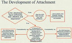 attachment theory essay attachment theory bowlby essay