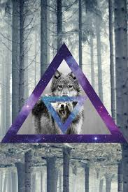 galaxy tumblr hipster wolf. Delighful Hipster Wolf Hipster Tumblr  Photo25 To Galaxy Tumblr Hipster A
