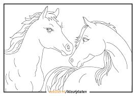Kleurplaten Paarden Verjaardag