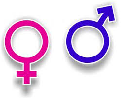 female vs male brain is there a difference healthy living while it s not completely clear how the structural differences in male and female brains affect their function scientists theorize that the most likely