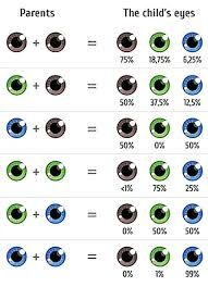 Iris Color Chart Choose Your Babys Eye Color The Fertility Institutes