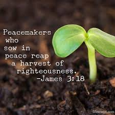 Bible Quotes About Hope Magnificent LifeSongs Uplifting Word Peacemakers Who Sow In Peace Re Flickr