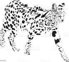 Gatto Serval In B W - Immagini vettoriali stock e altre immagini di Bianco  e nero - iStock