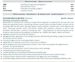 Customer Services Resume Sample Best Resumes Examples Example Cv