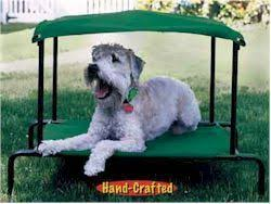 Breezy Canopy Outdoor Dog Bed Green Large 42 x 30 - PWBB101