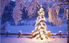 45+ Snowy Christmas Scenes
