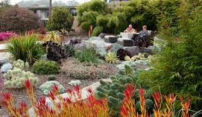 drought tolerant garden. Up On The Patio 4.1. Tags: Drought Tolerant Garden
