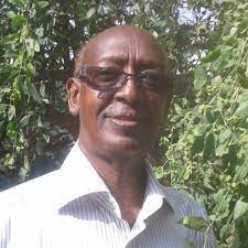 """Ahmed Ibrahim Awale on Twitter: """"It is fairly common to see a Somali with a  namesake in the animal such as """"Waraabe"""", """"Libaax"""", """"Good"""", """"Abees, or  plant kingdom such as """"Maygaag"""", """"Qudhac"""""""