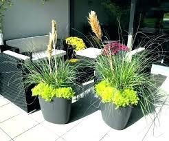 large tall plant pots uk outdoor planter ideas surprise planters modern gardens home flower garden for plants rectangular galvanized inexpensive