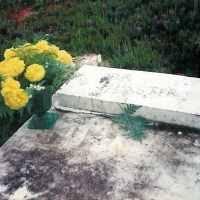 Ada Weaver (1875-1968) • FamilySearch